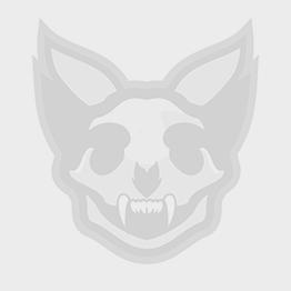 Skull Print Cushion